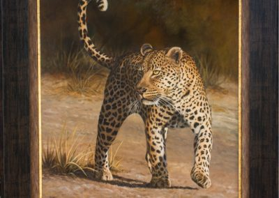 The confidence of a big cat (SOLD)